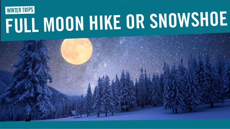 Full Moon Snowshoe or Hike