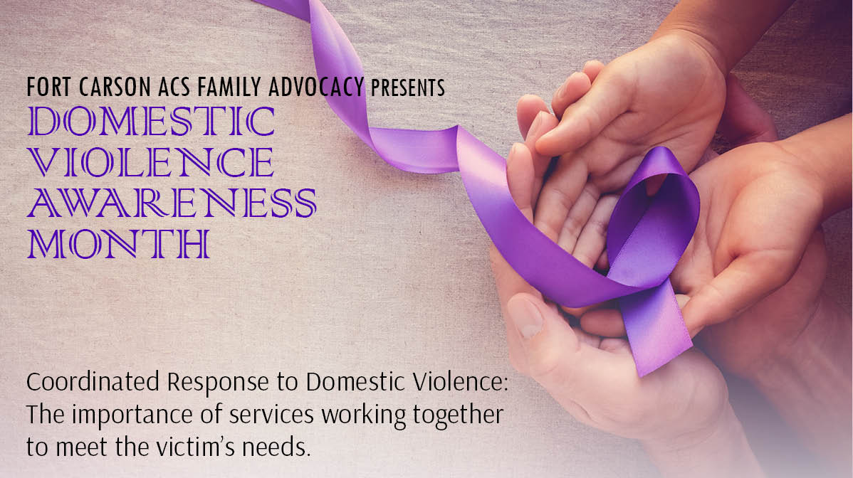Coordinated Response to Domestic Violence